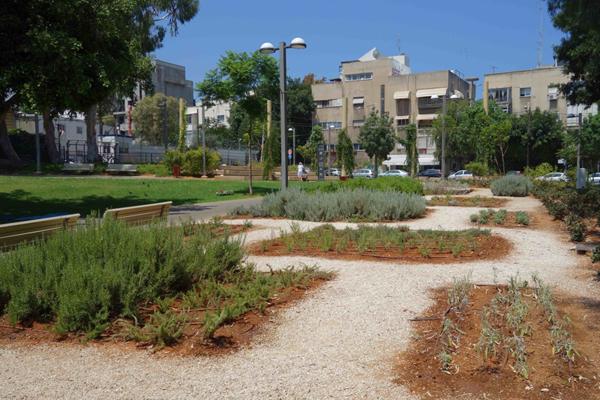 Selbstpflückbeete mit verschiedenen Kräutern im Gemeinschaftspark in Tel Aviv