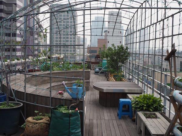 Der zweite Dachgarten in Seoul mit offenen Klasssenraum für die Landwirtschaftsschule, die regelmäßig Bauern und BäuerInnen aus der Region einlädt, um die urbanen GärtnerInnen auszubilden.
