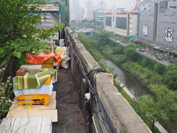 "Bienenhaltung auf dem ""Dondaemun Rooftop Paradise"""