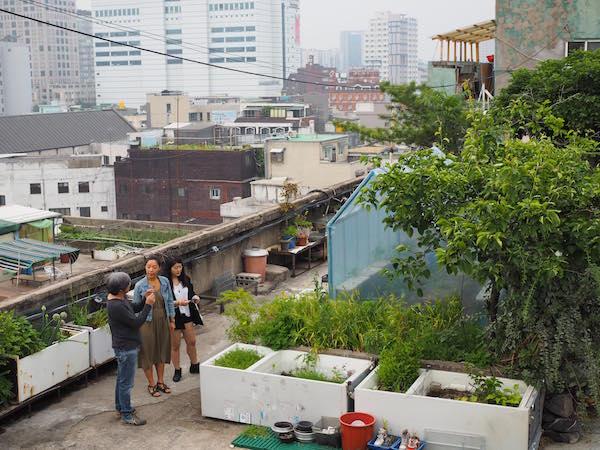 """Garten mit Birnenbäumen im """"Dondaemun Rooftop Paradise"""""""